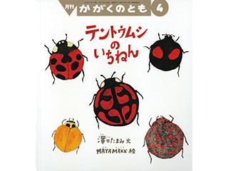 テントウムシの いちねん 澤⼝たまみ⽂ /MAYA MAXX